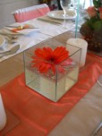 Floating Gerbera flower in square glass box