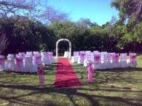 Garden wedding Constantia, Cape Town - decorated arch, pink colour scheme