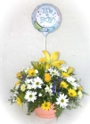 Send an arrangement with a stick balloon - click to enlarge
