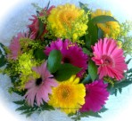 Send a bunch of gerberas in mixed colours - click to enlarge